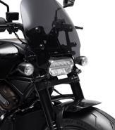 Harley-Davidson Sportster S 2021 lộ diện: 121 mã lực, động cơ V-twin 1.250 cc làm mát bằng chất lỏng - Ảnh 5