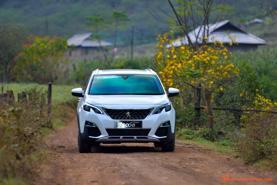 Bảng giá xe ô tô Peugeot cập nhật tháng 2 năm 2020