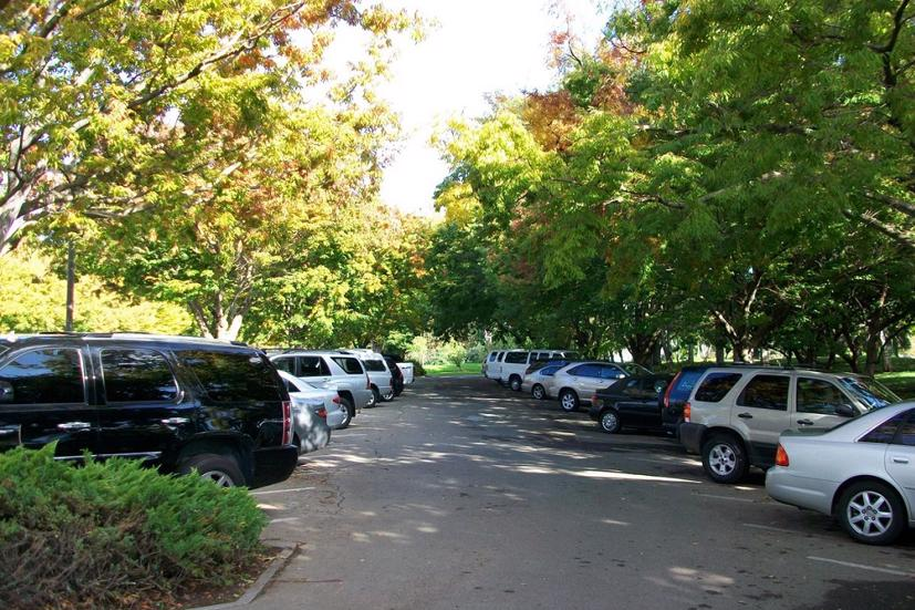Khi đỗ xe, cố gắng tìm nơi có bóng râm của cây cối, bên hông các tòa nhà.